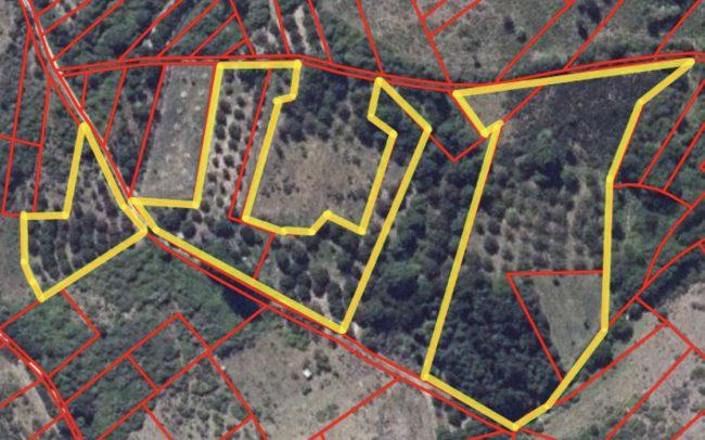 Finca para plantación de cerezos en Espinoso de Compludo